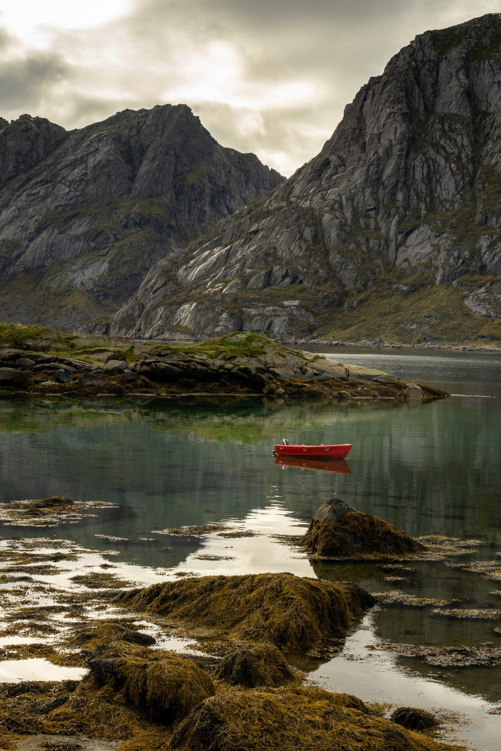 Coastlife Lofoten